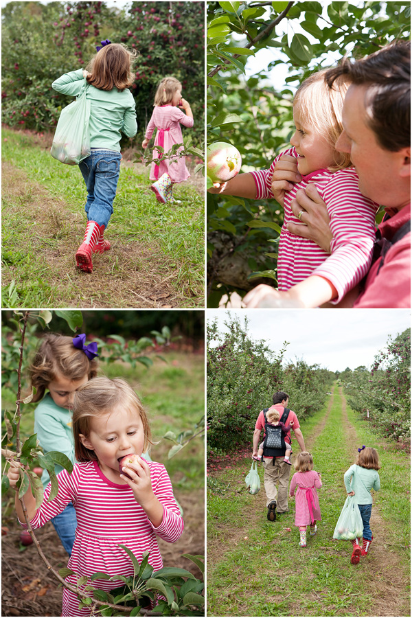 ApplePicking2
