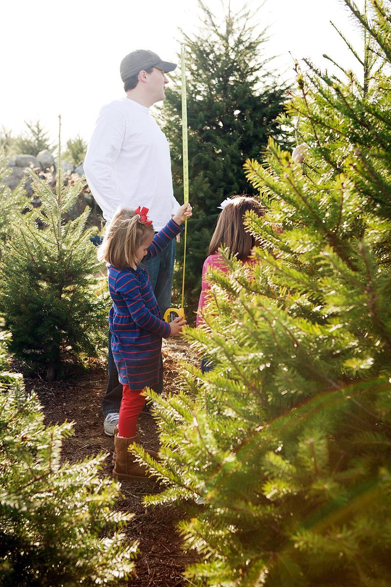 20111126 ChristmasTree_003