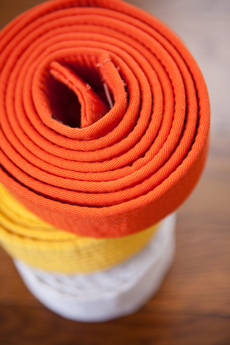 20120302 OrangeBelt_003