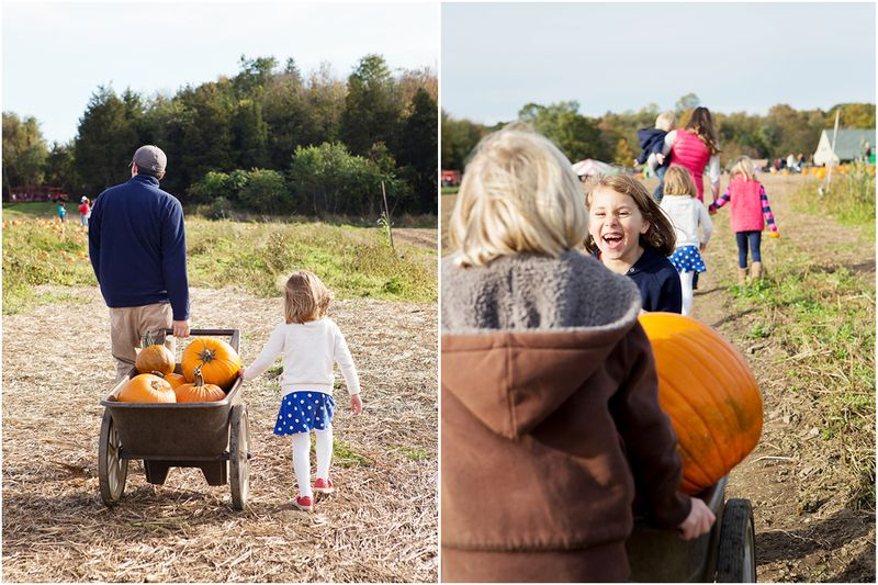 20121013 PumpkinPatch1