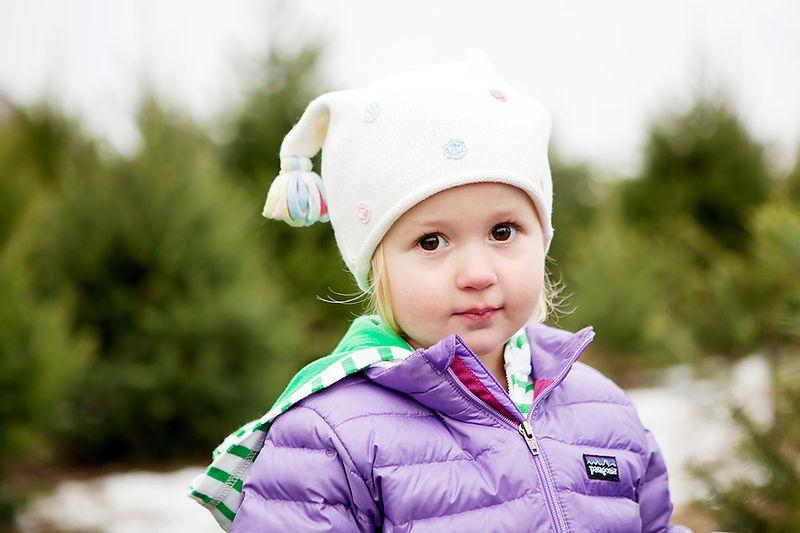 20121201_ChristmasTree_0014