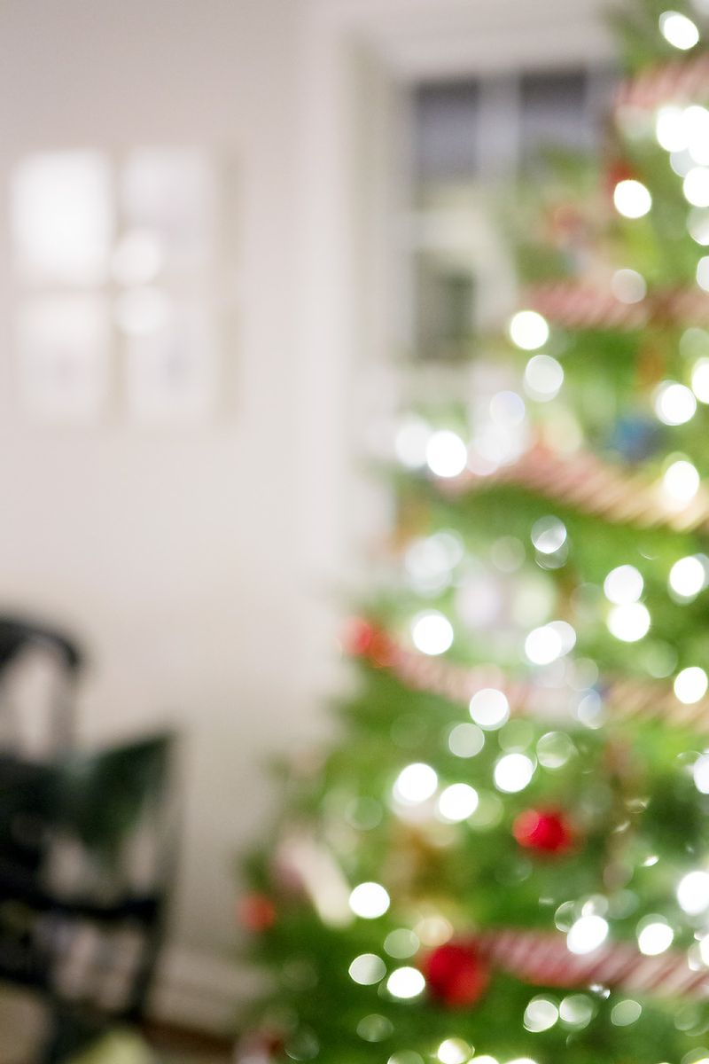 20121211 ChristmasTree_0002