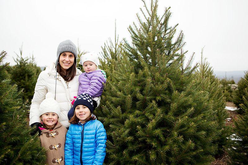 20121201_ChristmasTree_0005